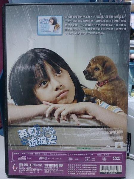 影音專賣店-H17-003-正版DVD*電影【再見流浪犬】-一段在遺棄裡找到愛的動人故事