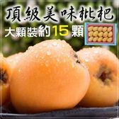 【果之蔬-全省免運】台灣頂級大顆枇杷原裝禮盒X3盒(15顆/盒 每盒約500g±10%含盒重)
