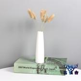 飾品擺件陶瓷小花瓶插水培植物容器辦公室桌面裝【古怪舍】