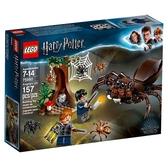 LEGO 樂高 哈利波特 75950 阿辣哥的巢穴 Aragog's Lair 【鯊玩具Toy Shark】