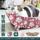 【新品特價】寵喵樂《貓咪帆船 貓抓窩 貓抓板》全面可抓 SY-389