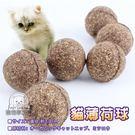 ★限時免運★貓薄荷球 貓主子最愛 日本樂天拍賣同步販售 高壓製成