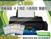 【加碼送千元禮券】EPSON L1800 A3+ 連續供墨印表機+一組墨水【兩年保固】
