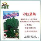 【綠藝家】大包裝A51.沙拉菠菜種子100克