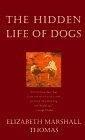 二手書博民逛書店 《The Hidden Life of Dogs》 R2Y ISBN:0395669588│Thomas