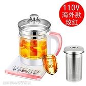 養生壺 110V養生壺家用煮茶器多功能玻璃杯中藥壺 快速出貨