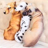 可愛仿真狗狗搞怪娃娃玩偶女孩睡覺毛絨玩具女生3D抱枕公仔萌 圖拉斯3C百貨