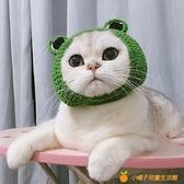 寵物針織帽子青蛙手作DIY毛線針織貓咪帽可愛寵物頭套【小橘子】