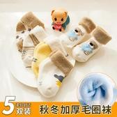 兒童襪子純棉秋冬季新生嬰兒0-3月1寶寶棉襪加厚保暖中筒襪冬天款