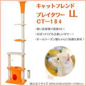 *WANG*日本Marukan《貓樂園貓跳台CT-184》遊戲,磨爪,舒壓,休息 -五階式