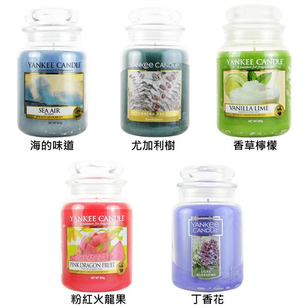 賣場一 YANKEE CANDLE 香氛蠟燭 623g(多款任選)【UR8D】