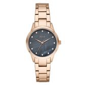 ELLE  Molitor優雅時尚晶鑽貝殼面腕錶-黑X玫瑰金