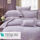 【名流寢飾家居館】蒂歐娜.100%天絲.80支.超柔觸感.標準雙人薄床包二用被四件組