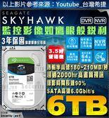 【台灣安防家】6TB 3.5吋 Seagate 監控 高畫質 影音 硬碟 SATA 6 智慧 適 NVR DVR 全新盒裝公司貨
