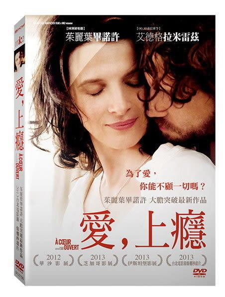 愛,上癮 DVD (購潮8)