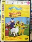 挖寶二手片-B53-正版DVD-動畫【天線寶寶:大小動物一起來】-國英語發音(直購價)海報是影印