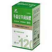 港香蘭 冬蟲夏草菌絲體膠囊 120粒 【瑞昌藥局】