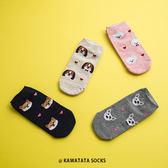 韓國小愛心狗頭腳踝襪/4色【558080303】