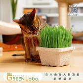 GreenLabo 日本新鮮貓草(一組二入)