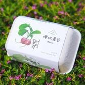 【青菜笠】雞蛋環保植栽盒-櫻桃蘿蔔