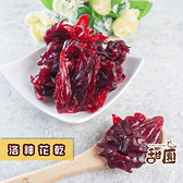 洛神花乾 120g 隨身包 果乾 植物界紅寶石 營養滿滿 洛神【甜園】
