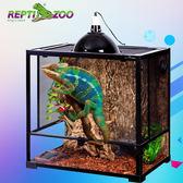 飼養箱 寵物爬蟲守宮變色龍綠鬣蜥蜴活體玻璃雨林缸 非凡小鋪 JD