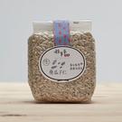 生葵瓜子仁 500G大包裝 低溫烘焙堅果 天然向日葵種子 好事來花生出品