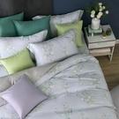鴻宇 雙人加大床包薄被套組 天絲300織 莎漫 台灣製 T20107