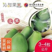 買就捐-沁甜果園SSN.頂級文旦小禮盒3-4粒裝/公斤﹍愛食網