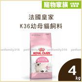 寵物家族-法國皇家K36幼母貓飼料4kg(4-12個月幼貓適用)
