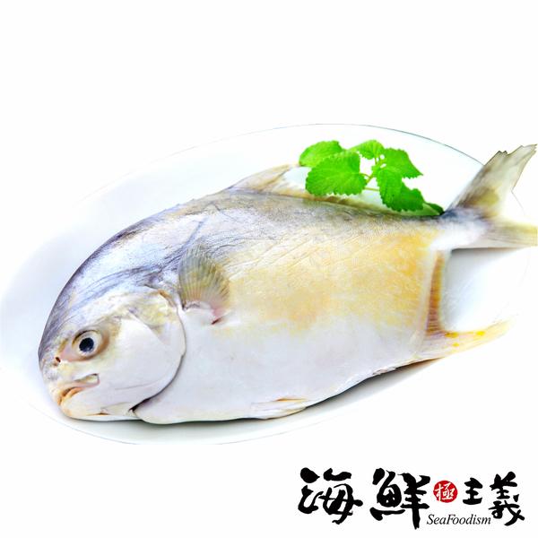 【海鮮主義】金鯧魚 約700~800g