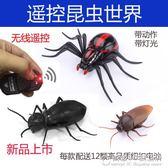 兒童玩具批發遙控蜘蛛螞蟻蟑螂整蠱仿真動物模型送朋友小孩禮物 概念3C旗艦店