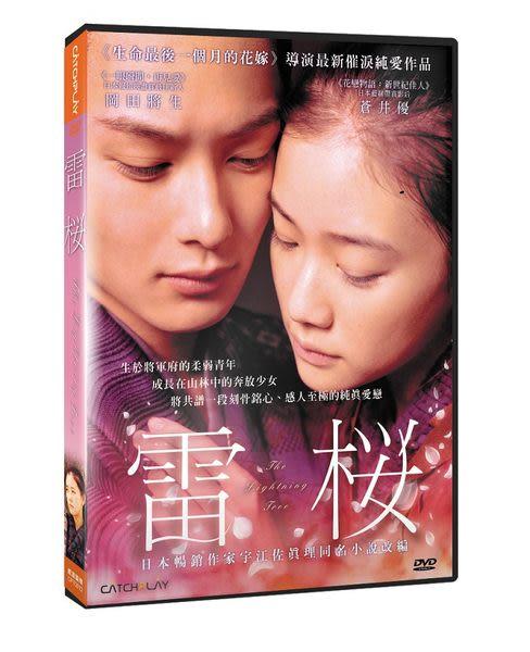 雷櫻 DVD (音樂影片購)