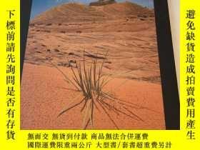 二手書博民逛書店美國發貨罕見時代生活行星地球叢書 之幹旱地區Arid landsY200344 時代生活 出版1984