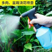 噴水器 噴壺澆花多肉噴霧瓶園藝家用灑水壺氣壓式澆水壺小型噴水壺   非凡小鋪