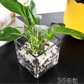 花器 簡約加厚玻璃透明正方形缸大號花瓶桌面擺件水培花器水養植物花盆 3C公社