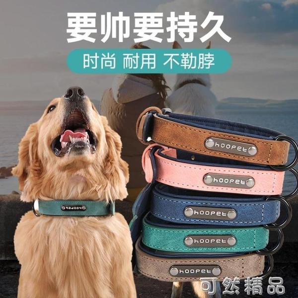 狗狗項圈套脖圈中型大型犬拉布拉多可調節馬犬脖子脖套金毛狗頸圈