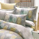 鴻宇 七件式雙人加大兩用被床罩組 瓦妮莎 美國棉授權品牌 台灣製2157