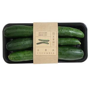 玉美產銷履歷小黃瓜300g