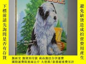二手書博民逛書店Puppy罕見in a Puddle (Animal Ark)