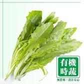 【有機認證生鮮時蔬】A菜 ( 250g /包)