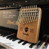 果實拇指琴20音 雙層板式卡林巴 20音單板箱式手指琴seeds手指琴 有缘生活馆
