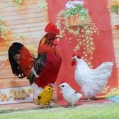 仿真公雞模型羽毛家禽動物玩具家居擺件工藝品【快速出貨】