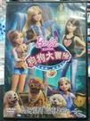 挖寶二手片-P01-088-正版DVD-動畫【芭比姐妹之狗狗大冒險】國英語發音(直購價)