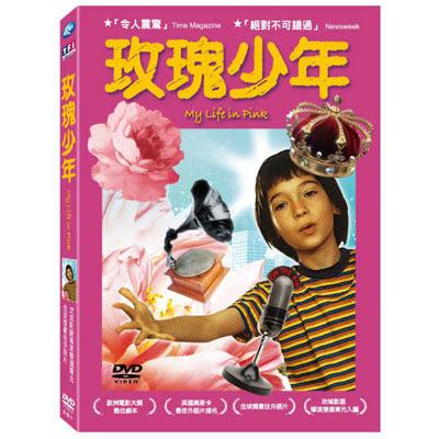 玫瑰少年DVD