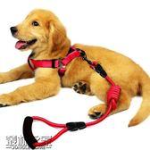 狗狗牽引繩小狗鏈子項圈泰迪金毛貓小型大型幼犬遛狗繩子寵物用品【叢林之家】