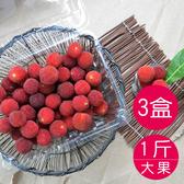 新鮮樹梅-大顆 (日本種/1台斤x3盒)免運組