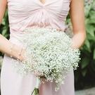 新娘手捧花新娘結婚 森系仿真滿天星花 西式婚禮花束婚紗攝影道具 幸福第一站
