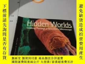 二手書博民逛書店英文原版:Hidden罕見Worlds: Looking Thr