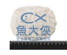 1A6A【魚大俠】BF032台灣裹粉里肌炸豬排(5片/700g/包)